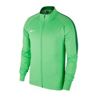 Тренировочная кофта Nike Academy 18, зеленая